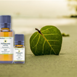 H-Fissures oil review