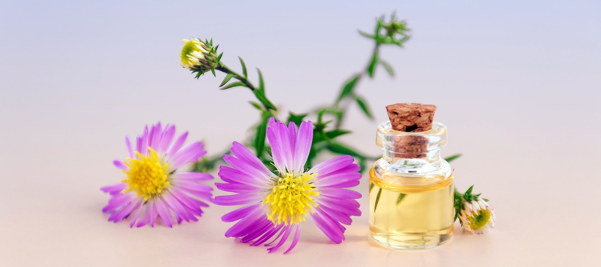 HOW TO USE HEMORRHOIDS OILS Heal Your Hemorrhoids