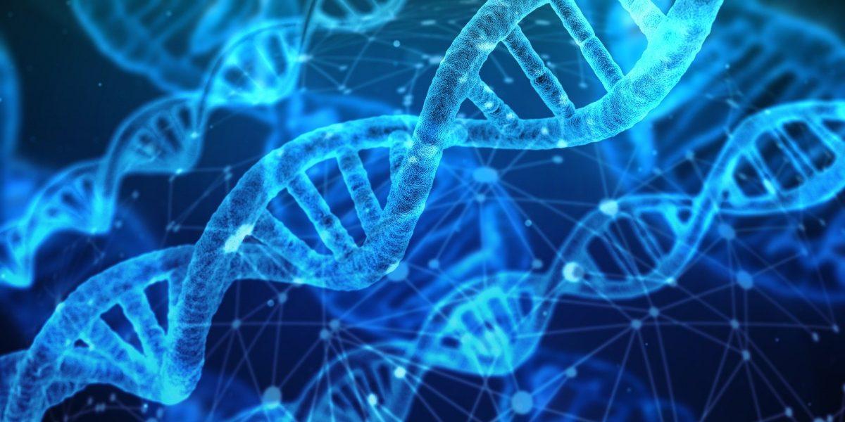 Are hemorrhoids genetic
