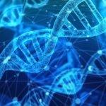 Are hemorrhoids genetic?