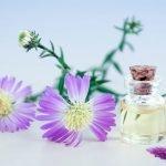 Essential oils for hemorrhoids